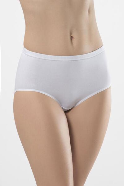 Yüksek Bel Likralı Biyeli Kom Bikini Külot 2'li Paket 241